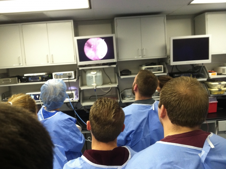 EKU AT Students Observe and Perform Arthroscopy Surgical Techniques
